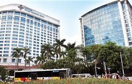 Sự trở lại của Bông Sen Corp nhìn từ thương vụ trái phiếu 6.450 tỷ đồng