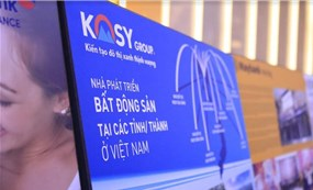 Đầu tư thêm cả lĩnh vực năng lượng, rủi ro nào chờ đón Kosy?