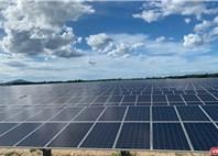 Chủ đầu tư dựán điện mặt trời đi đâu, về đâu?