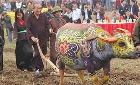 Phó Thủ tướng Trương Hòa Bình xuống đồng cùng nông dân trong Lễ hội Tịch điền