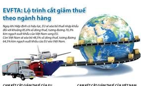 Infographic: EVFTA -  Lộ trình cắt giảm thuế theo ngành hàng
