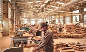 Ngành gỗ Việt thời covid-19: Thời cơ để xây dựng chuỗi liên kết nội địa (bài 2)