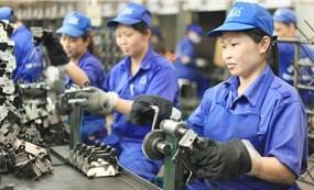 Kinh tế Việt Nam hồi sức sau đại dịch