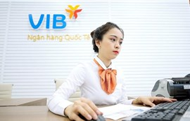 VIB đặt mục tiêu lãi 7.500 tỉ đồng năm 2021