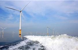 """""""Tay chơi mới"""" ở dự án điện gió 5.500 tỉ đồng tại Cà Mau"""