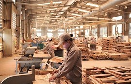 Ngành gỗ Việt thời covid-19: Vật lộn để tồn tại (bài 1)