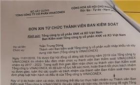 """Nhóm Hùng Túy""""đảo người"""" tại Ban Kiểm soát Vinaconex"""